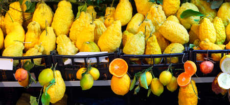 cedars: Cedars and other citrus fruits exposed in a street market, Sicily, Italy