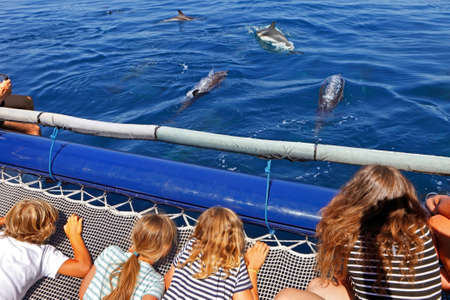 cetaceans: Young tourists during a dolphin watching
