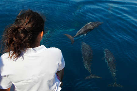dive trip: Young tourist girl during a dolphin watching