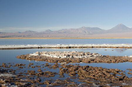 atacama: Laguna Cejas, Atacama desert, Chile