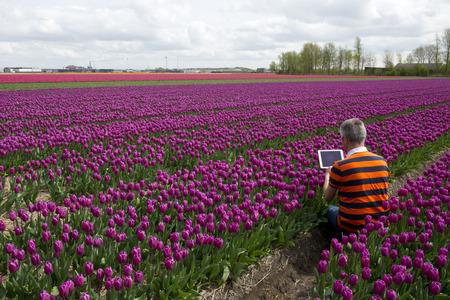 berkmeer: Business Man at Work