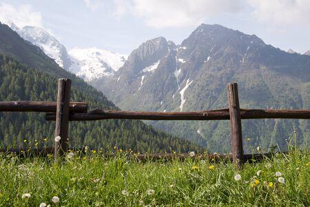 dolomite: Dolomites of Brenta, Italy