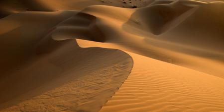 duna: duna de arena del desierto