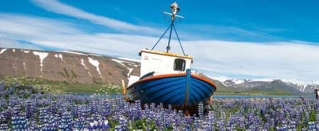 Pingeyri town, Westfjords, Iceland