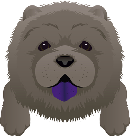 Chow Black Puppy Dog Cute Animal Vector
