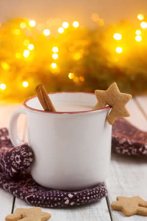 Cocoa or hot chocolate with cinnamon and gingerbread on a background with mittens, fir branches and cones. Bokeh effect, selective focus. Reklamní fotografie