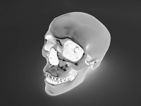 3D render of a x-ray  of human scull