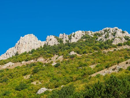 Beautiful landscape of Crimean mountains. Blue sky in sunny day and green forest with rocks on the background.