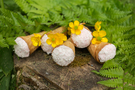 crackling: Still life - waffle cones in green leaves, delicious dessert