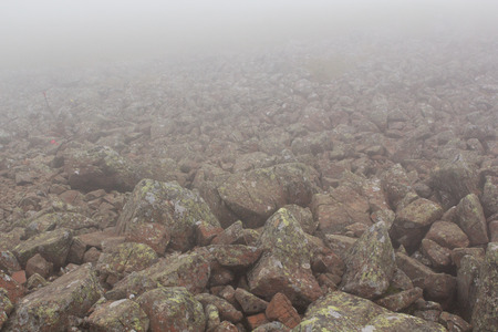 Fog. The mist over the rocks. Fog over the mountains. Haze.