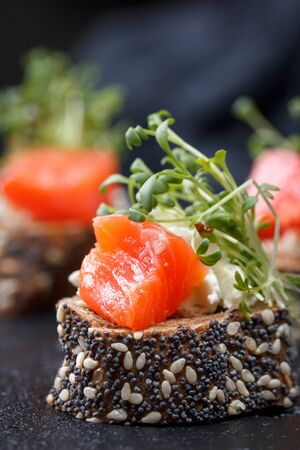 Canape with salmon and cheese cheese on a dark background. Fresh juicy cold.