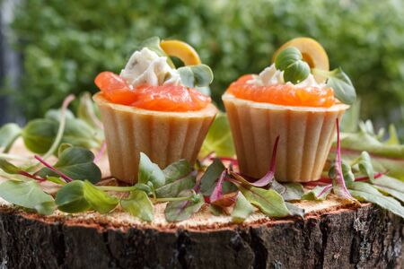 Delicious canape with salmon, cottage cheese, olive with micro greens on a dark background. Cold appetizer on a black background. Stock Photo - 81959448