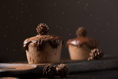 drenched: Chocolate muffins, decorated with a small cone on a dark wooden background. Low key. Cupcakes are poured with dark chocolate and cocoa powder. Cupcakes with unusual decoration.