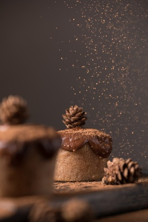 Chocolate muffins, decorated with a small cone on a dark wooden background. Low key. Cupcakes are poured with dark chocolate and cocoa powder. Cupcakes with unusual decoration.