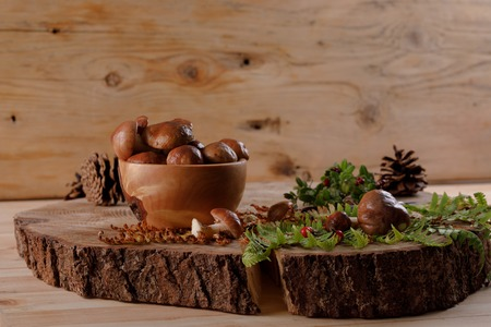 Still life with mushrooms and plants from the forest on a wooden saw. Rustic.