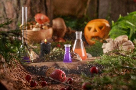 Halloween pumpkin head lantern on a forest background. Potion in test tubes. Stock Photo