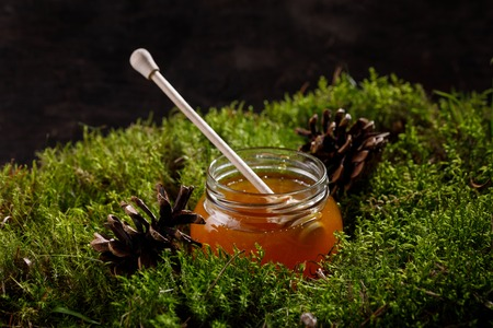 Honey in a glass jar with a wooden honey stick on wood moss. Side view.