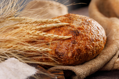 Round craft bread in the hands of a man and spikelets on a wooden board close-up. The concept of healthy food and traditional bakery. Rustic.