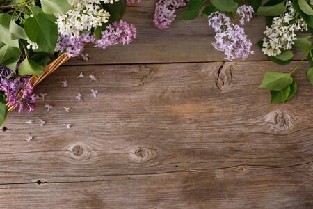 Decor of flowers on the background of vintage wooden planks.Vintage background with lilac flowers and place under the text. View from above. Flat lay. Cutlery. Vintage. Archivio Fotografico