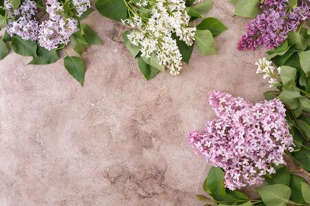 L'arredamento di fiori lilla su uno sfondo materico. Sfondo strutturale con fiori lilla e un posto sotto il testo. Vista dall'alto. Disposizione piatta.