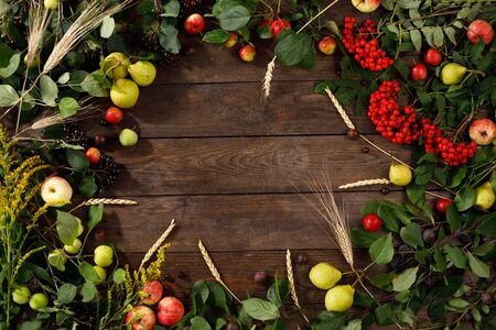 Frame of autumn fruits, apples and pears wooden background. Copy space. Harvest concept. Juicy bright autumn fruits.