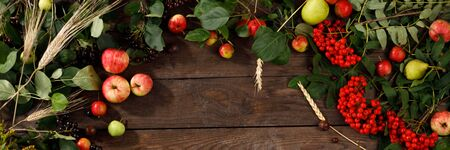 Frame of autumn fruits, apples and pears wooden background. Copy space. Harvest concept. Banner.