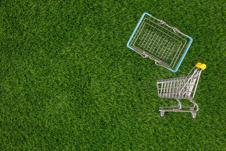 Shopaholic. Buyer. Shopping concept. Close-up. From above. Isolated cart and shopping basket on a background of green grass. Copy space. Stock Photo