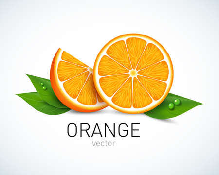 Orange slice with leaves isolated on white background. Vector illustration for decorative poster, emblem, natural product, farmers market. Perfect for packaging design of cosmetics and food. Vettoriali