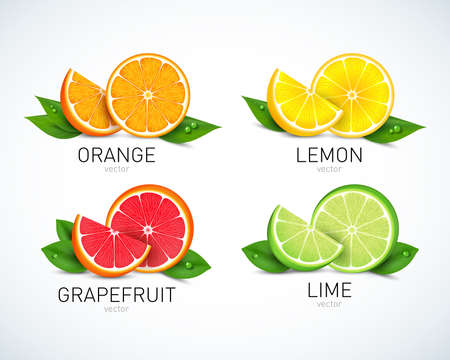 Citrus fruits halves and quarter wedges realistic icons square with orange grapefruit lemon isolated vector illustration Illustration