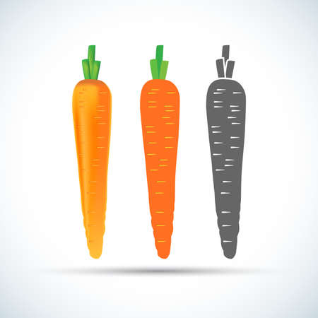 Colorful Carrots vector icon cartoon style isolated on white background. Carrot vector illustration. Carrot isolated black and color icons vector silhouette. Carrot, vegetable, food, vector flat style.