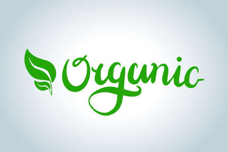 Organic text lettering. Hand drawn style type. Green Calligraphy letters with leafs. Isolated vector illustration. Ilustração