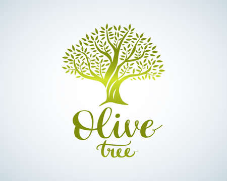 Elegant olive tree isolated icon. Vector tree logo design concept. Olive tree silhouette illustration. Natural olive oil tree plant emblem and brush lettering.