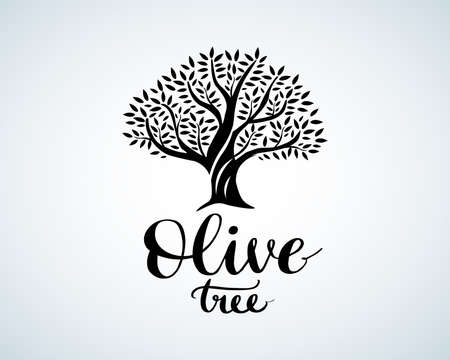 Elegant olive tree isolated icon. Vector tree logo design concept. Olive tree silhouette illustration. Natural olive oil tree plant emblem and brush lettering. Black and white version.