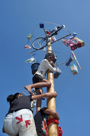 celebratory event: Indonesian womans in teams try to climb to the top of a greased pole called a panjat pinang in order to get to the prizes tied to the top of pole. Cities and villages across Indonesia celebrated of Independence Day with traditional games, and music, and f