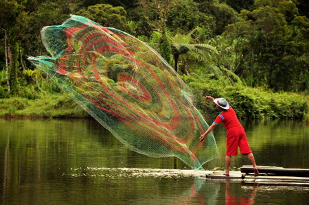 catch: Catch fish with nets