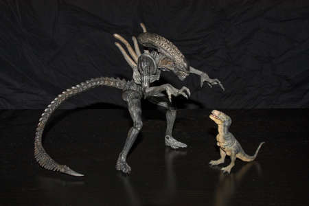Alien giving a scare to a rex calf.