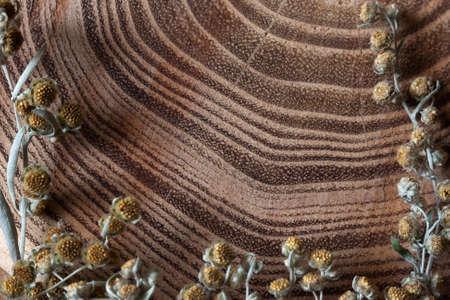 sagebrush: wood texture plant sagebrush frame