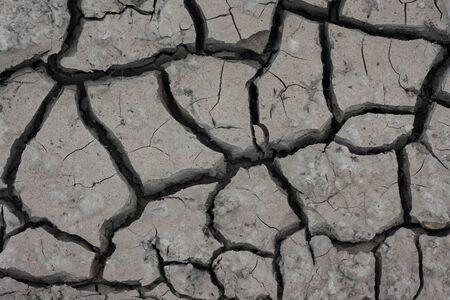 sprung: Soil structure chernozem crack drought