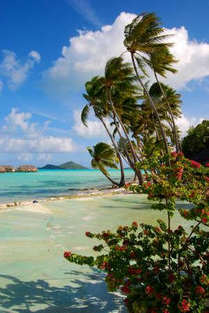 bora: Bora Bora Island  Honeymoon in Frech Polynesia Stock Photo
