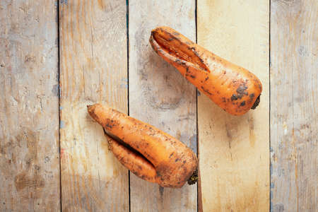 Two ugly trend carrots lying on wooden table. Flat lay
