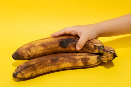 Dark spoiled banana in hand. A hand is holding a rotten black or brown banana fruit. Single spoiled black banana. Horizontal.