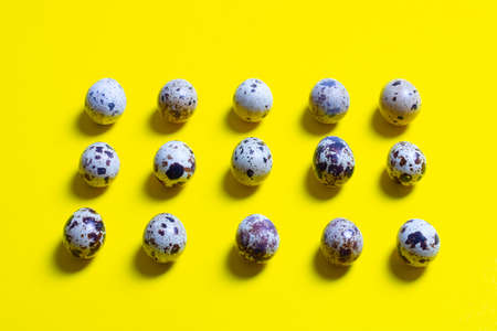 quail eggs concept on a yellow background, eco food trend,quail eggs in rows, flat lay, view from above.