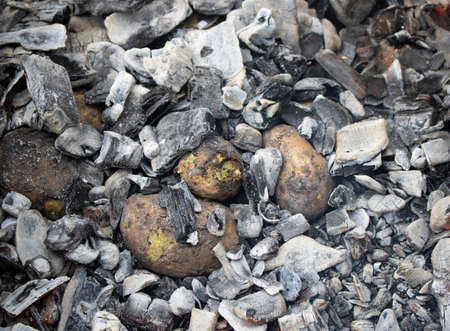 Potato tubers baked in the hot charcoal with red-hot wood embers, top view