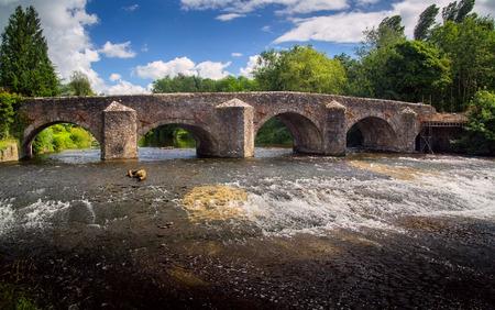rages: Old stone Bickleigh Bridge over Exe river. Devon. England