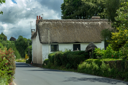 devonian: Typical Devonian house. White with a thatched roof. Devonshire. England Stock Photo
