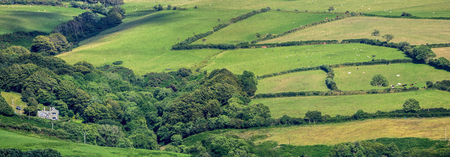 devonian: Lonely house in the hills of Exmoor. Around the house in the meadows of cows and sheep. Clear day. Devonian. UK Stock Photo
