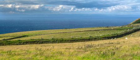 North Devon coast. Pastures by the sea. Long fence separates farmland. National park Exmoor. UK