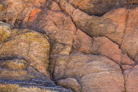 lynmouth: The texture of the rock close up. Many lines and layers. North Devon Coast. UK