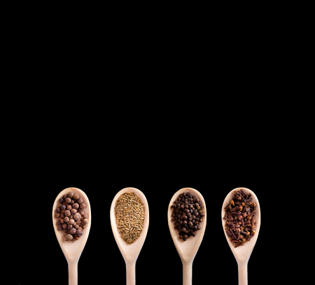 four spices in wooden spoons - allspice (pimento), cloves, zira (cumin) and black pepper