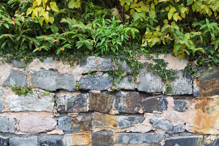 Fragment of a stone fence overgrown with grass. Natural background